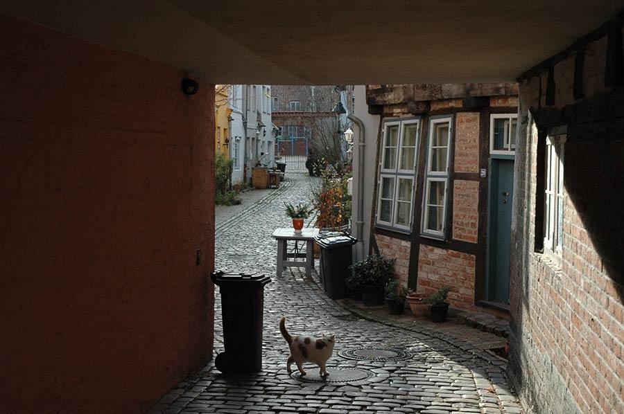 Gänge in Lübeck - Urlaub in Lübeck